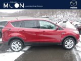 2019 Ruby Red Ford Escape SE 4WD #131569660
