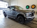 2019 Magnetic Ford F150 XLT Sport SuperCrew 4x4 #131593652