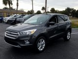 2019 Magnetic Ford Escape SE #131679275