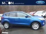 2019 Lightning Blue Ford Escape SEL 4WD #131789221