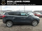 2019 Baltic Sea Green Ford Escape SE 4WD #131820177
