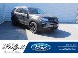 2019 Magnetic Ford Explorer XLT #131886744