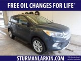 2019 Baltic Sea Green Ford Escape SE 4WD #131924397