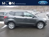 2019 Magnetic Ford Escape SEL 4WD #131964538