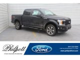 2019 Agate Black Ford F150 STX SuperCrew 4x4 #131998245