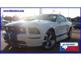 2008 Ford Mustang Sherrod 500 S Coupe Data, Info and Specs
