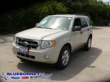 2009 Light Sage Metallic Ford Escape XLT V6 #13163653