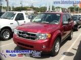 2009 Sangria Red Metallic Ford Escape XLT V6 #13163973