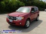 2009 Sangria Red Metallic Ford Escape XLT V6 #13163654