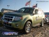 2009 Kiwi Green Metallic Ford Escape Hybrid #13163656
