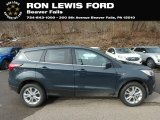 2019 Baltic Sea Green Ford Escape SE 4WD #132038573