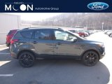 2019 Baltic Sea Green Ford Escape SE 4WD #132073222