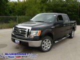 2009 Ford F150 XLT SFE SuperCrew