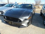 2019 Magnetic Ford Mustang GT Fastback #132294128