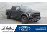 2019 Agate Black Ford F150 SVT Raptor SuperCrew 4x4 #132342202