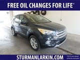 2019 Baltic Sea Green Ford Escape SE 4WD #132388543