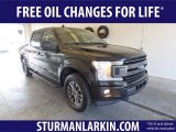 2019 Agate Black Ford F150 XLT SuperCrew 4x4 #132388541