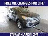 2019 Magnetic Ford Escape SE 4WD #132388539
