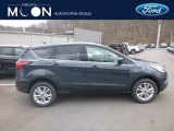 2019 Baltic Sea Green Ford Escape SE 4WD #132419625