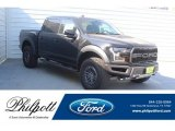 2019 Agate Black Ford F150 SVT Raptor SuperCrew 4x4 #132453557