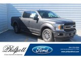 2019 Magnetic Ford F150 XLT SuperCrew #132475606