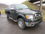 2014 Green Gem Ford F150 XLT SuperCrew 4x4 #132475641