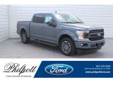 2019 Abyss Gray Ford F150 XLT SuperCrew #132522046