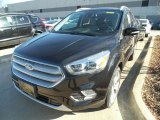 2019 Agate Black Ford Escape Titanium 4WD #132538029