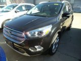 2019 Agate Black Ford Escape Titanium 4WD #132538012