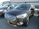 2019 Agate Black Ford Escape SEL #132538003