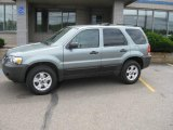 2006 Titanium Green Metallic Ford Escape XLT V6 4WD #13239406