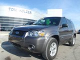 2006 Dark Shadow Grey Metallic Ford Escape Hybrid 4WD #1283339