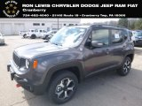 2019 Granite Crystal Metallic Jeep Renegade Trailhawk 4x4 #132637543