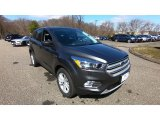 2019 Magnetic Ford Escape SE 4WD #132743331
