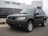 2006 Black Ford Escape XLT V6 4WD #1283322