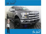 2015 Ingot Silver Metallic Ford F150 XL SuperCrew 4x4 #132876763