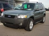 2006 Titanium Green Metallic Ford Escape XLT V6 4WD #1283319