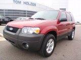 2006 Redfire Metallic Ford Escape XLT #1283316