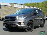 2019 Magnetic Ford Escape SE #133020446