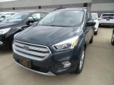 2019 Baltic Sea Green Ford Escape SEL 4WD #133042511