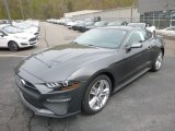 2019 Ford Mustang EcoBoost Premium Fastback Exterior