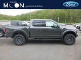 2019 Magnetic Ford F150 SVT Raptor SuperCrew 4x4 #133166402