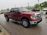 2014 Sunset Ford F150 XLT SuperCab 4x4 #133166560
