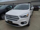2019 White Platinum Ford Escape Titanium #133247802