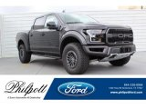 2019 Agate Black Ford F150 SVT Raptor SuperCrew 4x4 #133269255