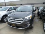 2019 Magnetic Ford Escape SE #133287559