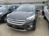2019 Magnetic Ford Escape SE #133287556