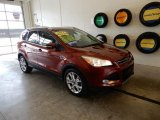 2014 Sunset Ford Escape Titanium 1.6L EcoBoost 4WD #133378265