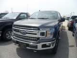2019 Magnetic Ford F150 XLT SuperCab 4x4 #133399314