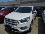 2019 White Platinum Ford Escape Titanium #133399312